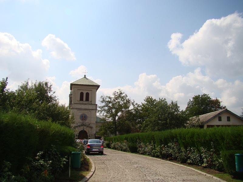 Intrare Manastirea Dealu