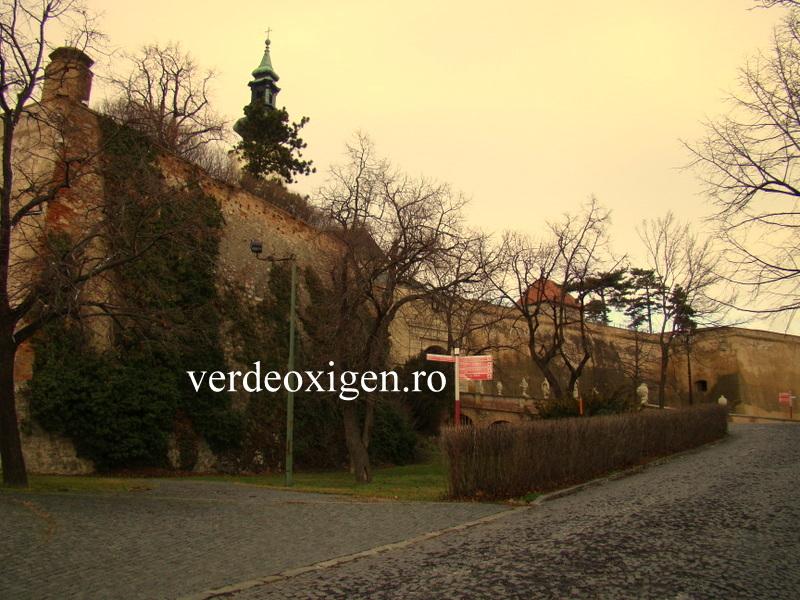 Zidurile castelului Nitra