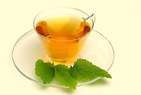 ceai de roinita