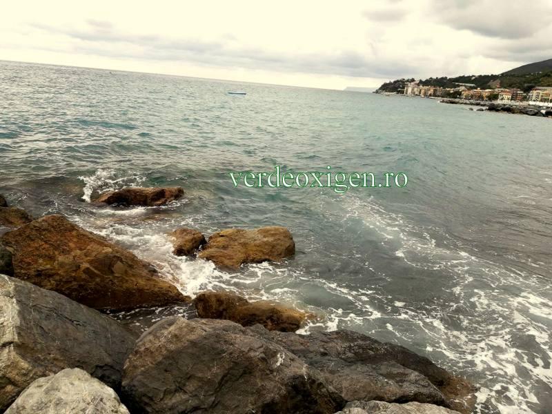 Marea Ligurica