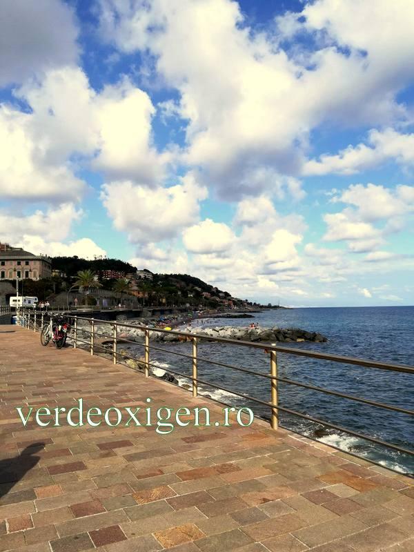 Cogoleto. Genova