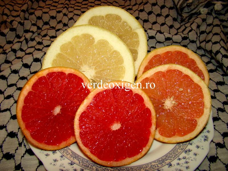 grapefruit alb, roz,rosu