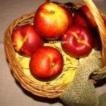 """""""Merele"""" verii cu soarele in interiorul lor: Cele 5 secrete ale nectarinelor"""