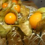 Physalis, cătina din Machu Pichu: Fructele magice ale incașilor